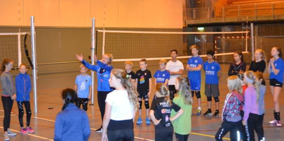 Ung volleyballglede